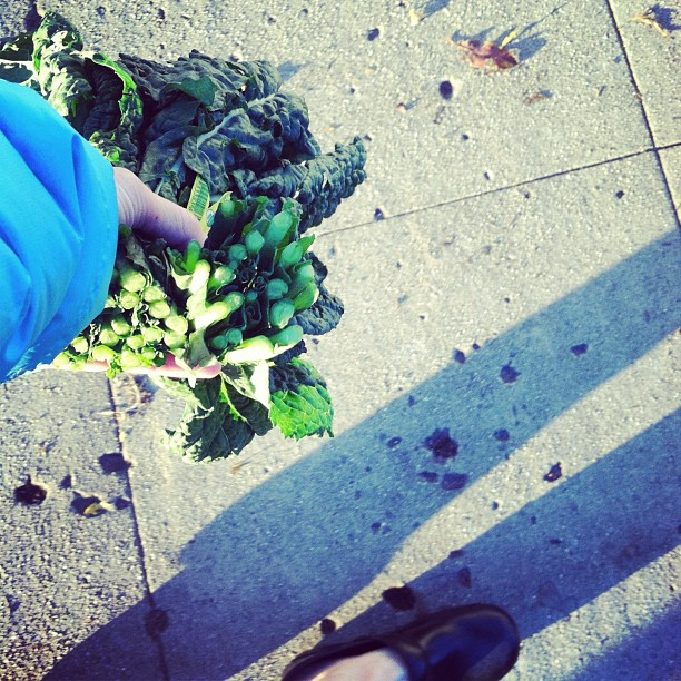 Sunset walk from the market, me and my kale. #sweethomecalifornia