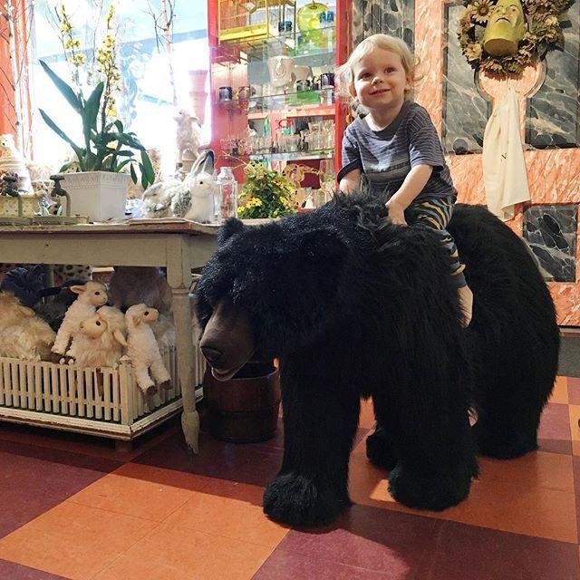 Mama Bear ride at Gran-Gran's Wild Thyme shop.