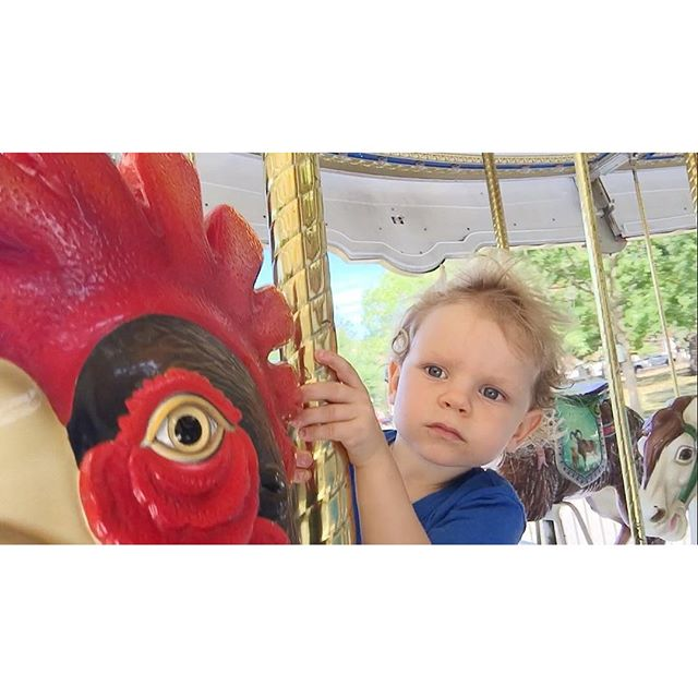 He always begs to ride the carousel. He always has the same concerned look once he's on board. He always wants another ride. #bostoncommon