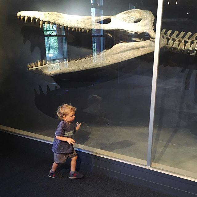 Kronosaurus. Human.
