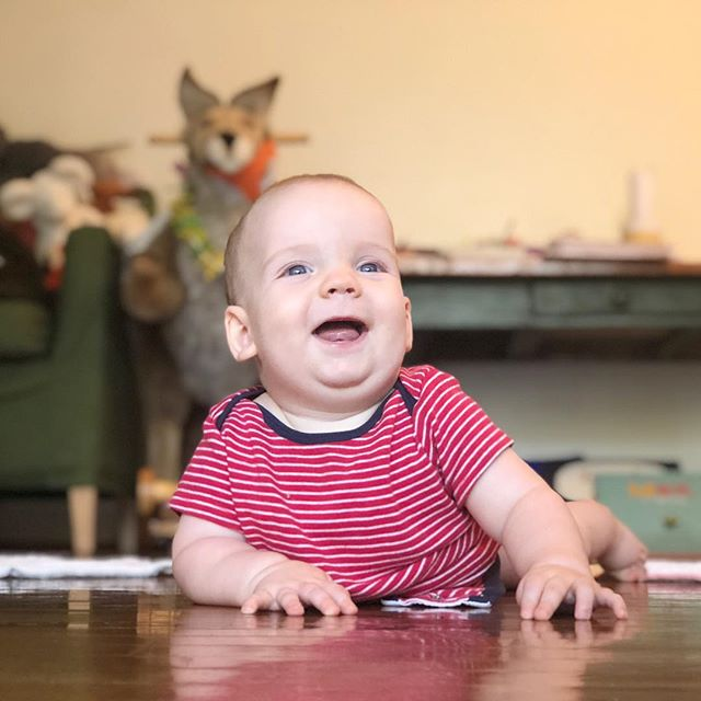 Someone is figuring out how to scooch backward and spin around. Working hard to catch up to big bro. I think he looks like my Grandpa Whaley. Others say Baby @jdegrazia. And @gravitegrac says @annerkwhale.